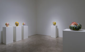 Installation photography, Matt Wedel: Peaceable Fruit