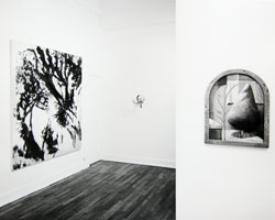 American/European Part I installation photography, 1986