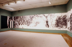 Don Suggs<BR>LACMA installation photography, 1989
