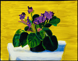 Bridlington Violets, 1989<BR>