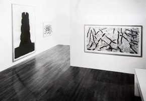 David Nash installation photography, 1990