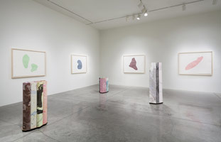 Installation photography, Richard Deacon: Beware of the Dog