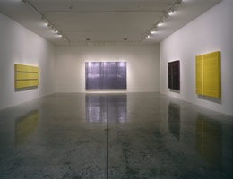 Jason Martin installation photography, 2000