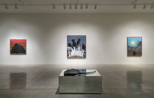 Installation photography<br> Enrique Martínez Celaya: Lone Star