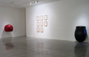 Peter Shelton, Domenico Bianchi<BR>installation photography, 2002