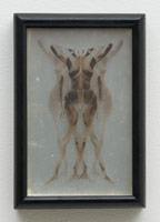 Robert Heinecken<br>