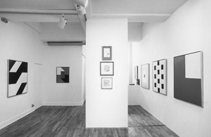 Frederick Hammersley, Rules and Exceptions installation photography