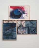 Terry Allen<BR>