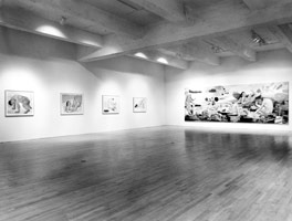 Charles Garabedian installation photography, 1992