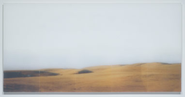 Sean Higgins<br>