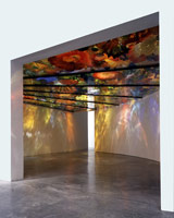 Pergola Ceiling Installation, 1998<BR>