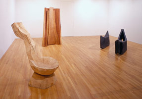 David Nash installation photography, 1991