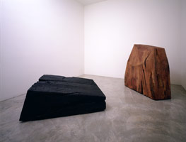Red & Black, 1996<BR>