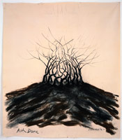 Ash Dome, 1992<BR>