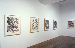 Ed Moses installation photography, 1989