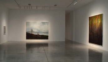 Installation photography, Enrique Martínez Celaya: Daybreak