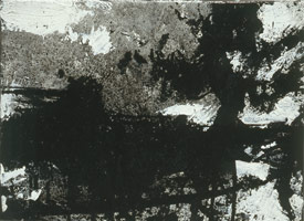 Landscape No. 224, 1992 - 93<BR>
