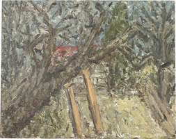Cherry Tree, Autumn, 2002 <br>
