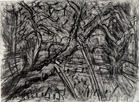 Cherry Tree with Diesel, 2003<br>