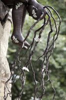 Alison Saar<br>