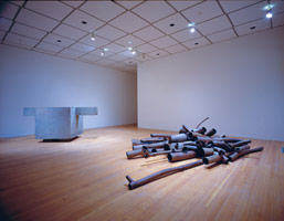 Peter Shelton installation photography, 1989