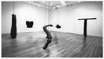 Peter Shelton Castings<BR>installation photography, 1989