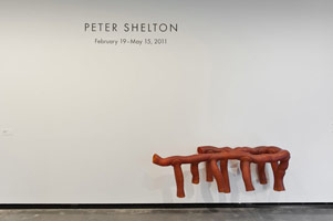 Installation photography, Peter Shelton, Portland Art Museum