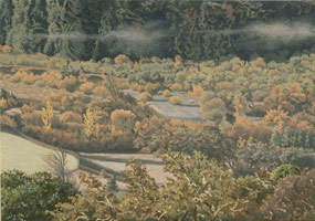 Anderson Valley Creek #1, 2005<br>