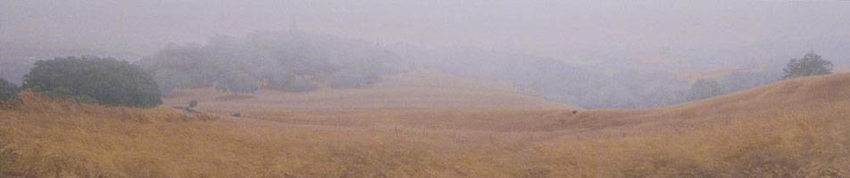 Late Summer Fog, 2006<br>