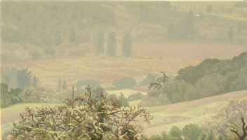 Valley View: Late Fall Rain, 2005<br>