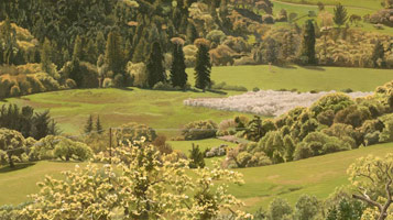 Valley View: Early Spring, 2005<br>