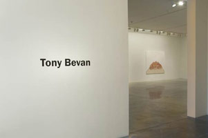 Installation photography, Tony Bevan<BR>