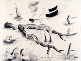 David Nash: Drawings