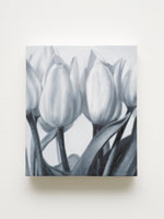 Kohshin Finley<br>