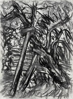 Cherry Tree, Winter, 2008<br>