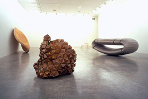 Richard Deacon: Not Yet Beautiful<br>